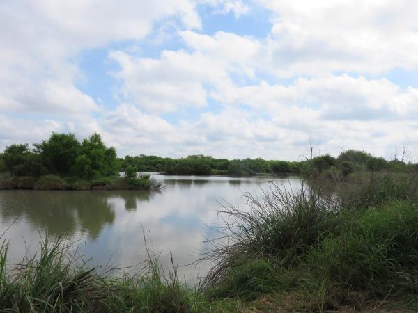 texas15 015