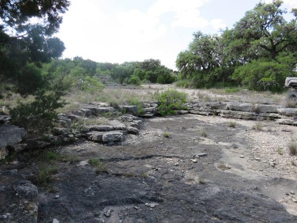 texas15 049